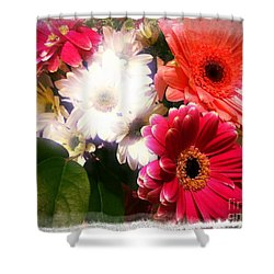 Shower Curtain featuring the photograph Daisy January by Meghan at FireBonnet Art