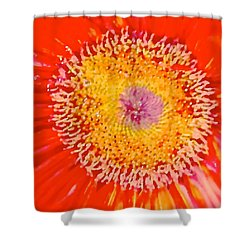 Daisy Mae Shower Curtain