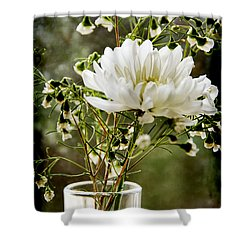 Daisy Mum  3 Shower Curtain