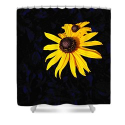 Daisy On Dark Blue Shower Curtain