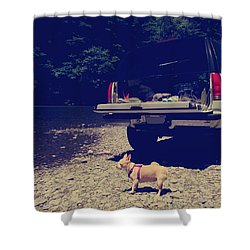 Daisy's Adventure Shower Curtain by Laurie Search