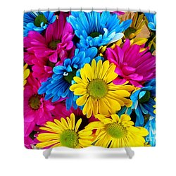 Shower Curtain featuring the photograph Daisys Flowers Bloom Colorful Petals Nature by Paul Fearn