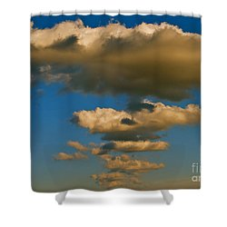 Dali-like Shower Curtain
