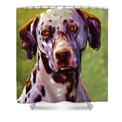 Dalmas Shower Curtain