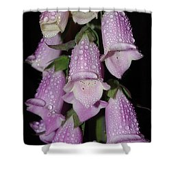 Damp Foxglove Shower Curtain by Adria Trail