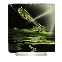 Damsel Dragon Fly  With Sparkling Reflection Shower Curtain by Peter v Quenter