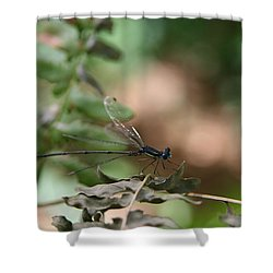 Shower Curtain featuring the photograph Damselfly by Neal Eslinger