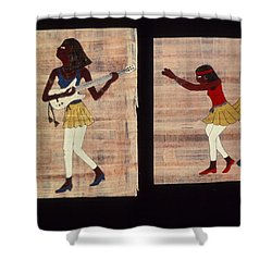 Dance And Flute Shower Curtain