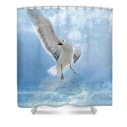 Shower Curtain featuring the photograph Dance For Food by Annie Snel