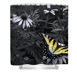 Dance In The Garden Shower Curtain by Don Spenner