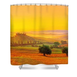 Dance Of Dawn Shower Curtain by Midori Chan