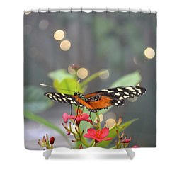 Dance Of The Butterfly Shower Curtain by Carla Carson