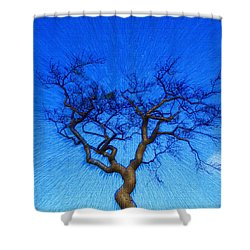 Dance Of The Dawn Shower Curtain