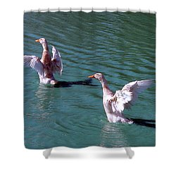 Shower Curtain featuring the photograph Dances On Water by Lesa Fine