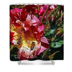 Shower Curtain featuring the photograph Dancing Bees And Wild Roses by Absinthe Art By Michelle LeAnn Scott