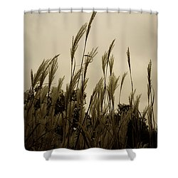 Dancing Grass Shower Curtain