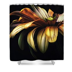 Dancing In The Dark Shower Curtain