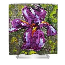 Dancing Iris Shower Curtain
