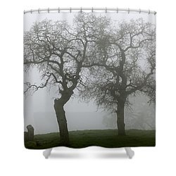 Dancing Oaks In Fog - Central California Shower Curtain