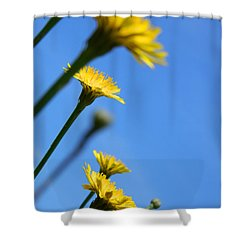 Dancing With The Flowers Shower Curtain
