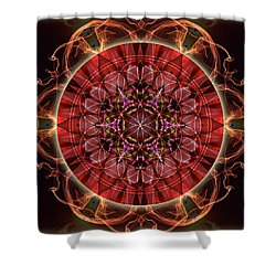 Dancing With The Solar Flares Shower Curtain
