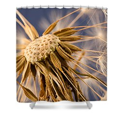 Dandelightful Shower Curtain
