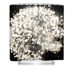 Dandelion Ablaze Shower Curtain