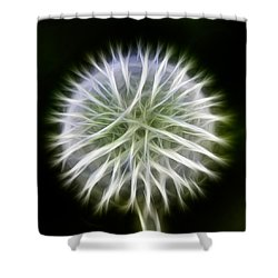 Shower Curtain featuring the photograph Dandelion Abstract by Omaste Witkowski