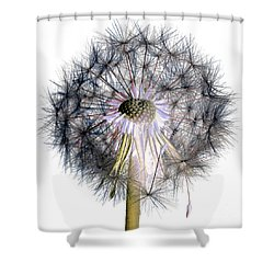 Dandelion Clock No.1 Shower Curtain