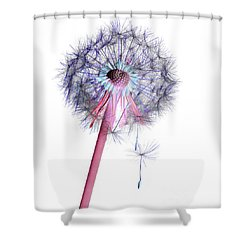 Dandelion Clock No.2 Shower Curtain