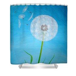 Dandelion In The Summer Shower Curtain by Sven Fischer