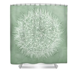 Dandelion Macro Abstract Soft Green Shower Curtain by Jennie Marie Schell