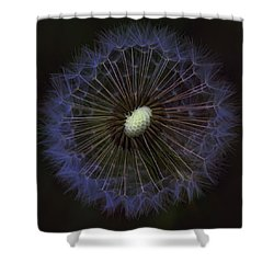 Dandelion Nebula Shower Curtain by Kathy Clark