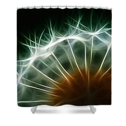 Dandelion Shower Curtain by ISAW Gallery