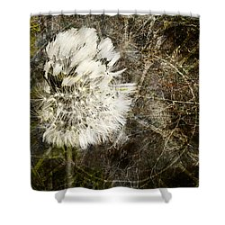 Dandelions Don't Care About The Time Shower Curtain