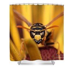 Danger Stare Shower Curtain
