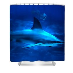 Dangerous Beauty Shower Curtain by Mark Andrew Thomas