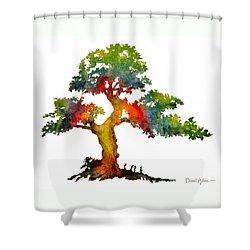Da140 Rainbow Tree Daniel Adams Shower Curtain