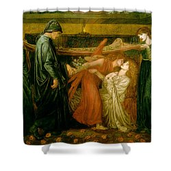 Dantes Dream At The Time Of The Death Of Beatrice 1856 Shower Curtain by Philip Ralley