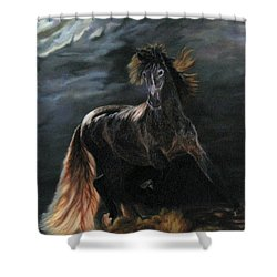 Shower Curtain featuring the painting Dappled Horse In Stormy Light by LaVonne Hand