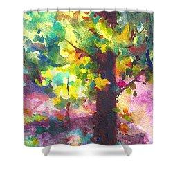 Dappled - Light Through Tree Canopy Shower Curtain