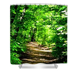 Dappled Sunlit Path In The Forest Shower Curtain by Maria Urso