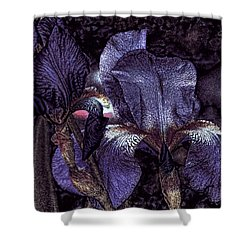 Dark Bearded Beauties Shower Curtain by Lesa Fine