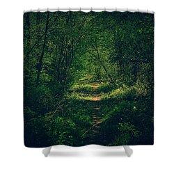 Dark Forest Shower Curtain by Daniel Precht