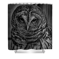 Dark Owl Shower Curtain