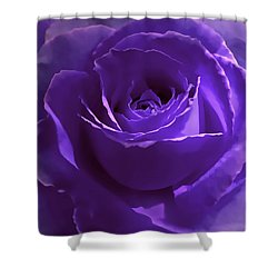 Dark Secrets Purple Rose Shower Curtain