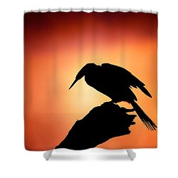 Darter Silhouette With Misty Sunrise Shower Curtain