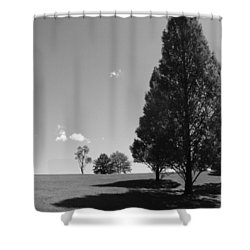 Davenport Park Shower Curtain