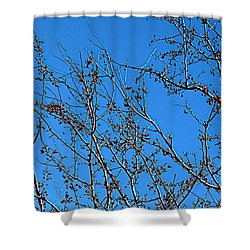 Dave's Blue Sky Shower Curtain by Joseph Yarbrough
