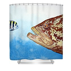 David And Goliath Shower Curtain by Jeff Lucas
